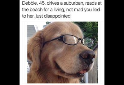 Dog Bios: Five Dogs Who Are Probably Head Of The PTA And Want You To Be Home By 11