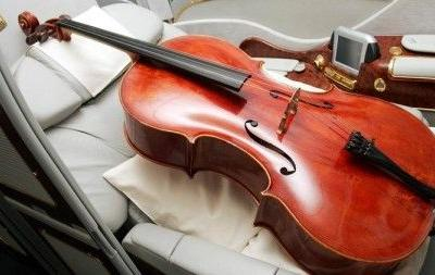 American Airlines passenger removed from flight despite buying seat for cello