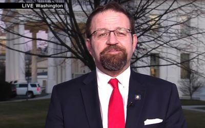 Ex-White House Official: Do-Nothing Gorka 'Not Allowed to Sit in the Real Meetings'