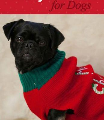 Kilo the Pug's Holiday Gift Guide for Dogs 2017