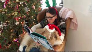Jennifer Garner Reads Christmas Story To Dog & Her Reaction Is Precious