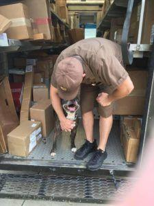 This Facebook Page Is Dedicated To Dogs And The UPS Drivers Who Love Them