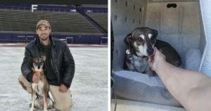 Support Dog Travels From Oregon To Texas After Her Human Dies Suddenly