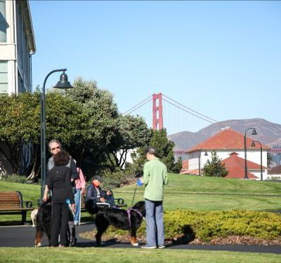 Inside San Francisco's Presidio: A 1,500-acre former US Army base turned National Park now home to Lucasfilm and Peter Thiel's VC firm