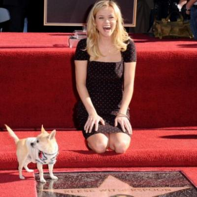 Reese Witherspoon confirms 'Legally Blonde 3' is happening