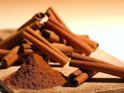 Add cinnamon to your treats this holiday season: Research confirms the spice protects against obesity