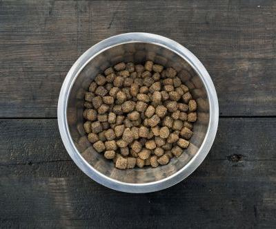 Company recalls dog food that may contain too much vitamin D, lead to kidney failure