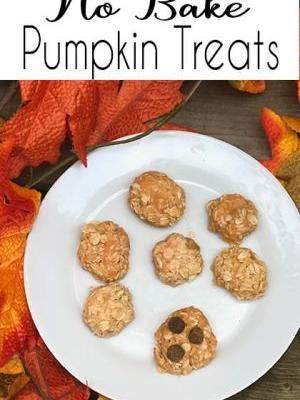 How to make yummy easy no bake pumpkin dog treats