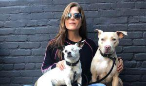Year in Review: Celebrities Who Chose Pet Adoption in 2017