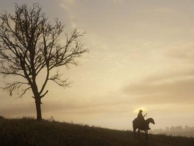 Red Dead Redemption 2's Large and Living World Will Be Intimate and Realistic - Rockstar