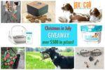 Christmas in July Giveaway-Over $550 in prizes!