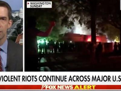 Republican Sen. Tom Cotton claims the 101st Airborne could be called to quell 'domestic terrorism' at Black Lives Matter protests