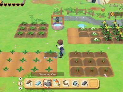 Story of Seasons: Pioneers of Olive Town Preview - Fields of Promise