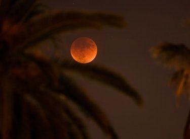 Can You See The Super Blue Blood Moon In The U.S.? It's Complicated
