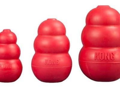 Are KONG Dog Toys Indestructible?