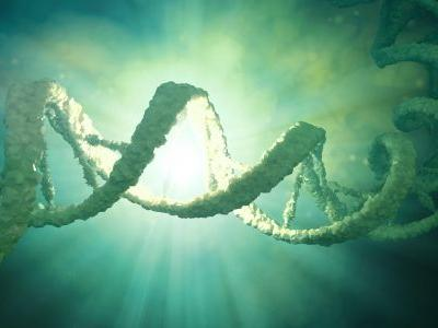 Has China arrested its scientist who claimed to have genetically engineered human babies?