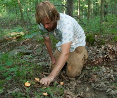 Foraged Beer Takes Craft Brewing Back to the Land