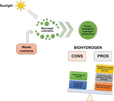 Biohydrogen production from microalgae-Major bottlenecks and future research perspectives