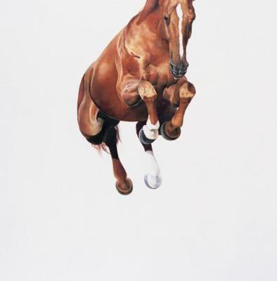 Artist's Meticulously Detailed Paintings Play with