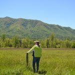Insider's guide to Great Smoky Mountain birding - Cades Cove