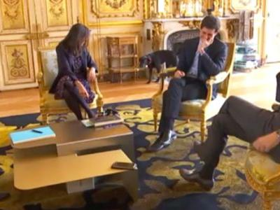 Watch French President's Dog Pee In Fireplace During Official Meeting