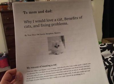Kid writes a six page report to her parents on why they should adopt a cat