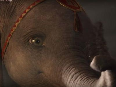 Dumbo Prepares To Take Flight in New Live-Action Trailer From Disney