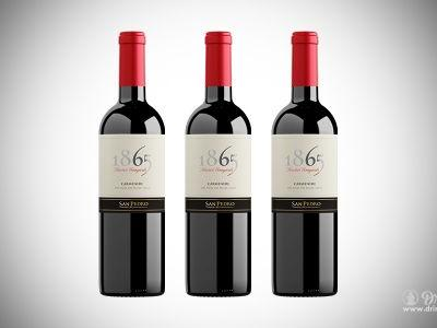 San Pedro 1865 Single Vineyard Carmenère 2015: Extra Fine Chilean Wine