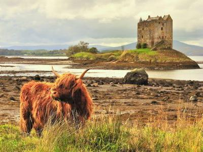 Great Scot! 5 incredible trips through breathtaking Scotland
