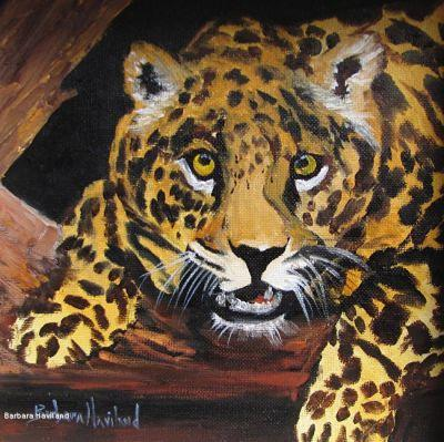 Miniature oil painting, Leopard,cat,9x9,canvas,wildlife,Barbara Haviland Texas Contemporary Artist