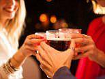 Drinking alcohol kills new brain cells in adults