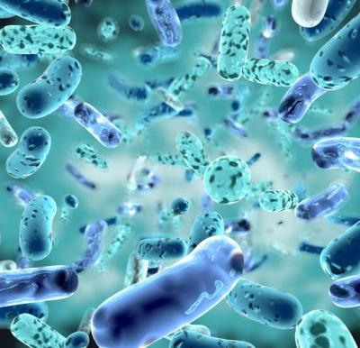 NAD supports claims being made by 'medical probiotic' manufacturer