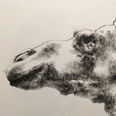 Swipe and be underwhelmed by an unfinished neck. crosshatching