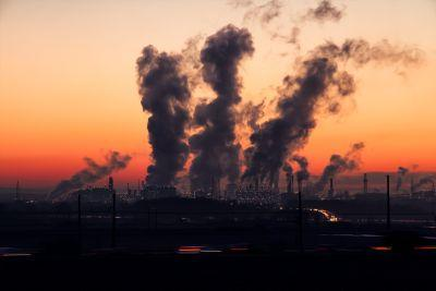 Study confirms toxic environments cause cancer, not merely genetics