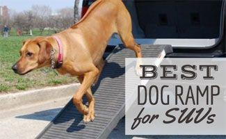 What Is the Best Dog Ramp for SUVs?
