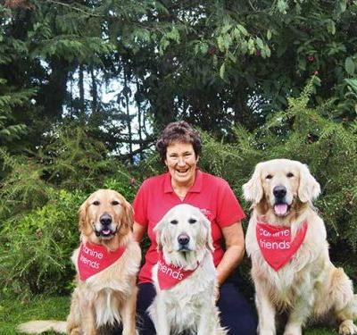 Golden retrievers bring pet therapy to Manawatu retirement homes