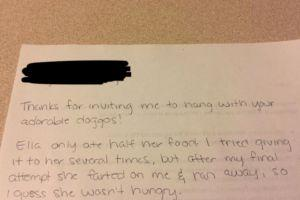 Pet Sitter's Note Hilariously Describes What It's Like To Love A Dog