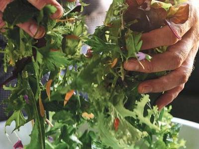 The Importance of Dressing Your Salad