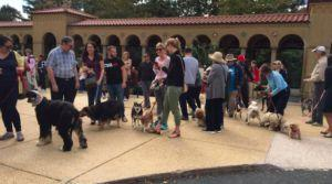 """Animal Lovers Line Up For Annual """"Blessing Of The Pets"""" Ceremony"""