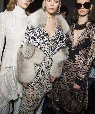Roberto Cavalli: Ready-to-Wear AW18
