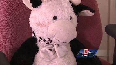 Stuffed animal saves toddler who fell two stories