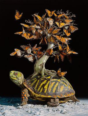 Lisa Ericson Imagines Fantastical Ecosystems Carried on the Backs of Turtles