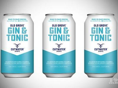 Thank You Cutwater For Bringing Us Gin and Tonic in a Can - This is What Dreams Are Made Of