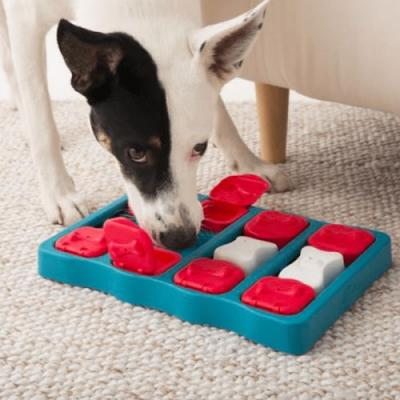 What Toys Are Best for German Shorthaired Pointers?