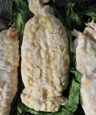 How to make tempeh: the high-protein, low-fat food you can ferment yourself