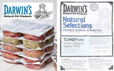 Dog food recalled for Salmonella; pet owners also at risk