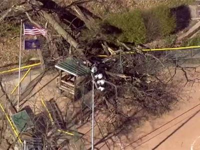 Ten people injured after tree falls on softball field in western Pennsylvania
