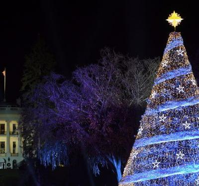 The Great Recession is having an unexpected impact on Christmas tree sales nearly a decade later