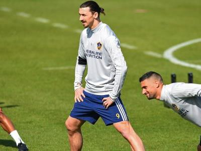 The lion is hungry - Ibrahimovic eager for MLS success