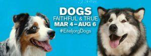 Dogs: Faithful and True Exhibition at Indianapolis Museum